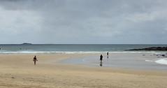 IMG_3198_01 (Matt Pearce) Tags: beach australia coffs 2016 04032016