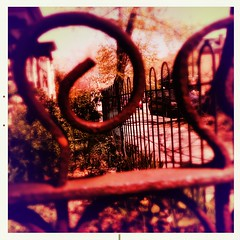 snail fence on 48th (karenchristine552) Tags: cameraphone usa philadelphia spring westphiladelphia pennsylvania pa philly urbangarden westphilly universitycity frontgarden iphone cedarpark mobilephotography hipstamatic