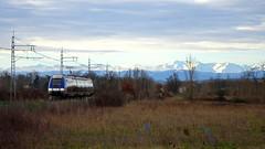Train SNCF TER - Venerque-le-Vernet (Voie du Midi) Tags: train tren rail railway toulouse pyrnes sncf ter agc arige occitanie matabiau