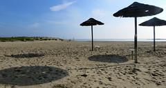 IMG_0005x (gzammarchi) Tags: italia mare ombra natura paesaggio ravenna ombrellone casalborsetti