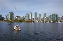 Creekside (Clayton Perry Photoworks) Tags: canada skyline vancouver boats spring bc yaletown falsecreek explorebc explorecanada