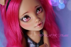 PicsArt_04-09-05.01.10 (Cleo6666) Tags: monster high wolf doll ooak custom mattel repaint howleen monsterhigh