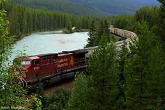 Morant's Curve, Banff National Park, Alberta (Nitish_Bhardwaj) Tags: trees mountain lake canada tree water train rail railway alberta banff canadianpacific banffnationalpark canadianrockies morantscurve