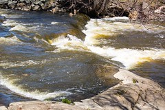 840A3029 (rpealit) Tags: nature river scenery wildlife rapids trail national waters winding refuge wallkill