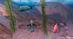 Whimsy-82 (Popis_second_life) Tags: whimsy secondlife