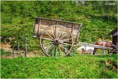 Il carretto (lefotodiannae) Tags: di carretto legno ruote lefotodiannae