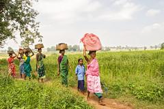 On their way to the market (wietsej) Tags: people india way landscape women market their on chhattisgarh minoltadynax7 alnar minolta20mmf28af