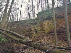 Pczki Dolne - abandoned limestone quarry (nesihonsu) Tags: foothills forest rocks poland polska caves limestone geology quarry sudety geologia geosite permian limestones sudeten sudetes jaskinie zechstein lowersilesia pogrze dolnolskie dolnylsk pogrzeizerskie geologyofpoland pczkidolne