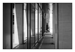 Jeu de lumire et de reflet (SiouXie's) Tags: street city light bw white black reflection noir fuji lumire nb reflet rouen fujifilm normandie arcades rue et normandy blanc ville 55200 siouxies fujixe2