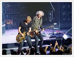 Concerts - 57 (GilDays) Tags: music france rock concert guitar olympus rouen normandie vox normandy guitarist musique zenith guitare artiste musicien tlphone aubert seinemaritime em10 louisbertignac bertignac guitariste jeanlouisaubert olympusomdem10 lesinsus