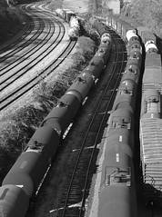 DSC_0784 (Andy McCurdy) Tags: blackandwhite philadelphia yard train tracks oil tankers tankcars