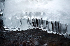 creeksicles 3 (Salamanderdance) Tags: winter snow cold ice creek frozen freezing freeze icicle icy creekside icyle