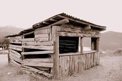 El tiempo (Vanesa Alejandra Basualdo) Tags: vacation patagonia lake argentina canon de landscape photography coast madera sand day quiet calm choza tiempo neuquen