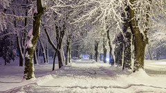 Snowy night in Slavonski Brod.