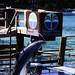 Bahamas 1988 (295) Paradise Island: Paradise Lake
