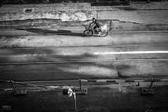 urban cycler (Fine Coast Moiners) Tags: lumix 17 20 gh2