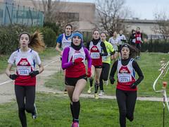 Micaela Melatini , Maria Cavalieri, Samira Amadel e Laura Coppari