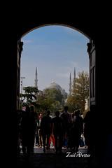 Sultan Ahmed Istanbul, Turkey (zaid_alwttar) Tags: turkey istanbul mosque sultan ahmed      sultanahmedistanbul