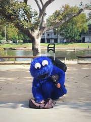 Monster Bagpipes (gigchick) Tags: costume melbourne sesamestreet busker bagpipes cookiemonster busking