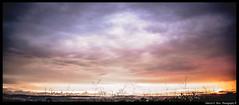 Amanhecer em Senador Canedo - Gois - Brasil-29-02-2016 (Fabricio P Silva) Tags: sol brasil dia nuvens cerrado amanhecer nascer goiania canedo goias senador amanhecendo nascendo