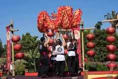 _DSC6663 (Confucius Institute at SDSU) Tags: dragon leah chinesenewyear brush cny erhu confucius teaceremony calligraphy lunarnewyear abacus taiji hulusi lny guzheng taiqi piatt whitedragon liuyi confuciusinstitute siufong mrcao cisdsu rogercao leahmarkworth 6arts siufongevans kuaiban piattpundt hanlaoshi