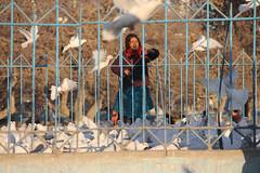 IMG_0203 (Romal Fahim) Tags: blue houses sky mountain afghanistan history asia islam hill tomb ali human mountainside mazar mazaresharif hazrat humanlife