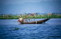 From the archive- fishing boat on Inle Lake (Princessa Pea) Tags: film analog 2000 myanmar inlelake birma pentaxmz5n fishermanonalake fujinotsure w0288
