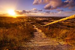Going Home (martijnvdnat) Tags: sunset clouds dawn path dunes watertower nederland hills outlook wilderness katwijk overlook viewpoint shrubs hitech fietsen vantagepoint zuidholland formatt katwijkaanzee zuidduinen vlaggeduin