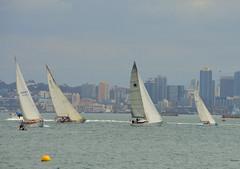 DSC_0020 (Eleu Tabares) Tags: ocean california sea water sailboat bay boat sailing sandiego boating sail sailor