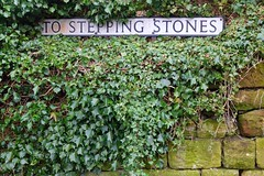 DSCF1184 (Indonesia Documentary Photographer) Tags: steppingstones