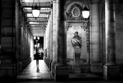 Between columns (pascalcolin1) Tags: light blackandwhite paris statue night theater noiretblanc lumire columns thatre nuit streetview colonnes comdiefranaise photoderue urbanarte photopascalcolin