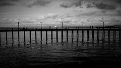 the pier fisherman (rocami19) Tags: leica dlux5