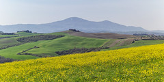 Crete senesi e monte Amiata (H.d.Fabius) Tags: landscape crete siena senesi