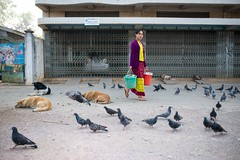 A woman goes to set up her stall in the early morning. Shan State, Myanmar. (Jeff Williams 03) Tags: woman dogs work walking burma pigeons myanmar shanstate