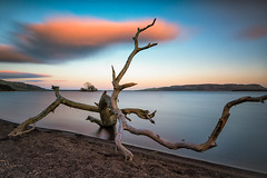 Driftwood Sunset (JSP92) Tags: sunset red sky orange water clouds landscape scotland big long exposure unitedkingdom driftwood le lee gb loch tranquil leven stopper waterscape kinross