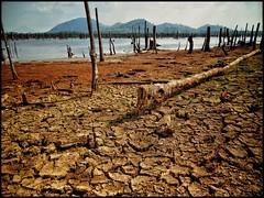 Kesan El Nino di sebuah Tasik (thegunznroses1904) Tags: lake elnino kemarau travellight amateurtobepro azizasrarphoto keringair