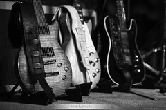 Neal Black & The Healers (Jiri Princ) Tags: black guitar blues singer neal healers bedna