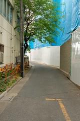 DSCF1833 (keita matsubara) Tags: japan  saitama urawa