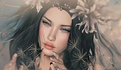 Violet~Spring all Around... (Skip Staheli (Clientlist closed)) Tags: flowers portrait closeup spring pastel avatar dandelion sl digitalpainting secondlife dreamy virtualworld skipstaheli violetdaffordil