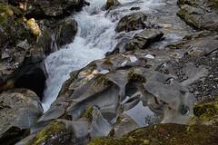 Rock pools (Travels with Kathleen) Tags: newzealand nature water rock reflections stream outdoor algae fiordland fiordlandnationalpark