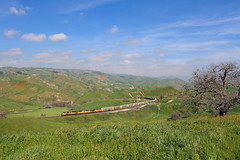 Emerald hills at Tunnel 1 (Moffat Road) Tags: california ca railroad green up grass train tunnel unionpacific locomotive caliente emd tehachapipass sd70ace bealville vehicletrain