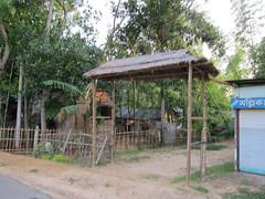 IMG_6942.jpg (Kuruman) Tags: gate sylhet bangladesh srimangal