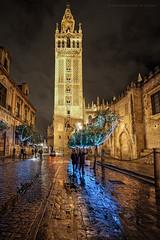 Navidad 2015. Sevilla (Javier Martinez de la Ossa) Tags: christmas street espaa night navidad lluvia sevilla andaluca spain seville nocturna urbana rein giralda javiermartinezdelaossa