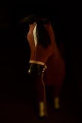 160125-horse-toy.jpg (r.nial.bradshaw) Tags: vertical photo nikon image creativecommons fullframe stockphoto stockphotography d4 adobecameraraw royaltyfree attributionlicense 2470mm28 probono probonopublico fxformat rnialbradshaw thezoomthatcould nikkor2470f28originalworkhorsemodel