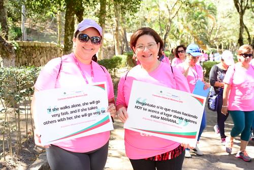 VVH Global Mentoring Walk 2015