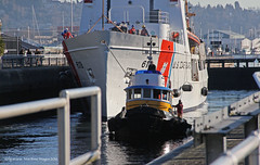 4206_Flyer_Active 618 (lg evans Maritime Images) Tags: water canon working tugboat tug tugs 100400mm tugboats shipcanal seattlewa workboats 18135 maritimeimages lgevans