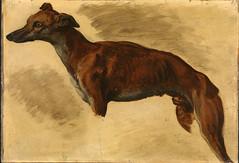 Lévrier (lluisribesmateu1969) Tags: delacroix nasjonalmuseet oslo 19thcentury