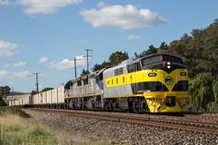 "2016-02-07 SSR GM27-VL356-VL357 Bowenfels 8146 (Dean ""O305"" Jones) Tags: railroad train au australia container southern newsouthwales kelso streamliner intermodal shorthaul 8146 bowenfels gm27 vl356 vl357 grainforce"