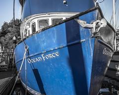 Ocean Force (Willamette Valley Photography) Tags: ocean blue water oregon docks boats outside outdoors pier boat dock ship piers ships olympus newport pacificnorthwest