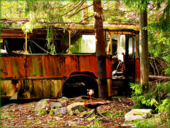 Bus who forgot the road back (Totallyme) Tags: trees bus abandoned forest chair rust past oldcars